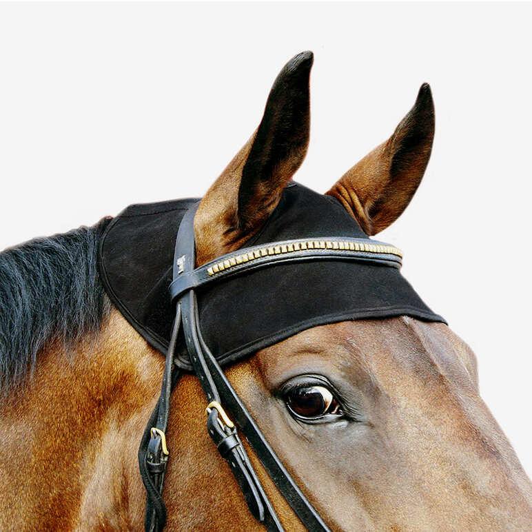 Back on Track nakkebeskytter til hest