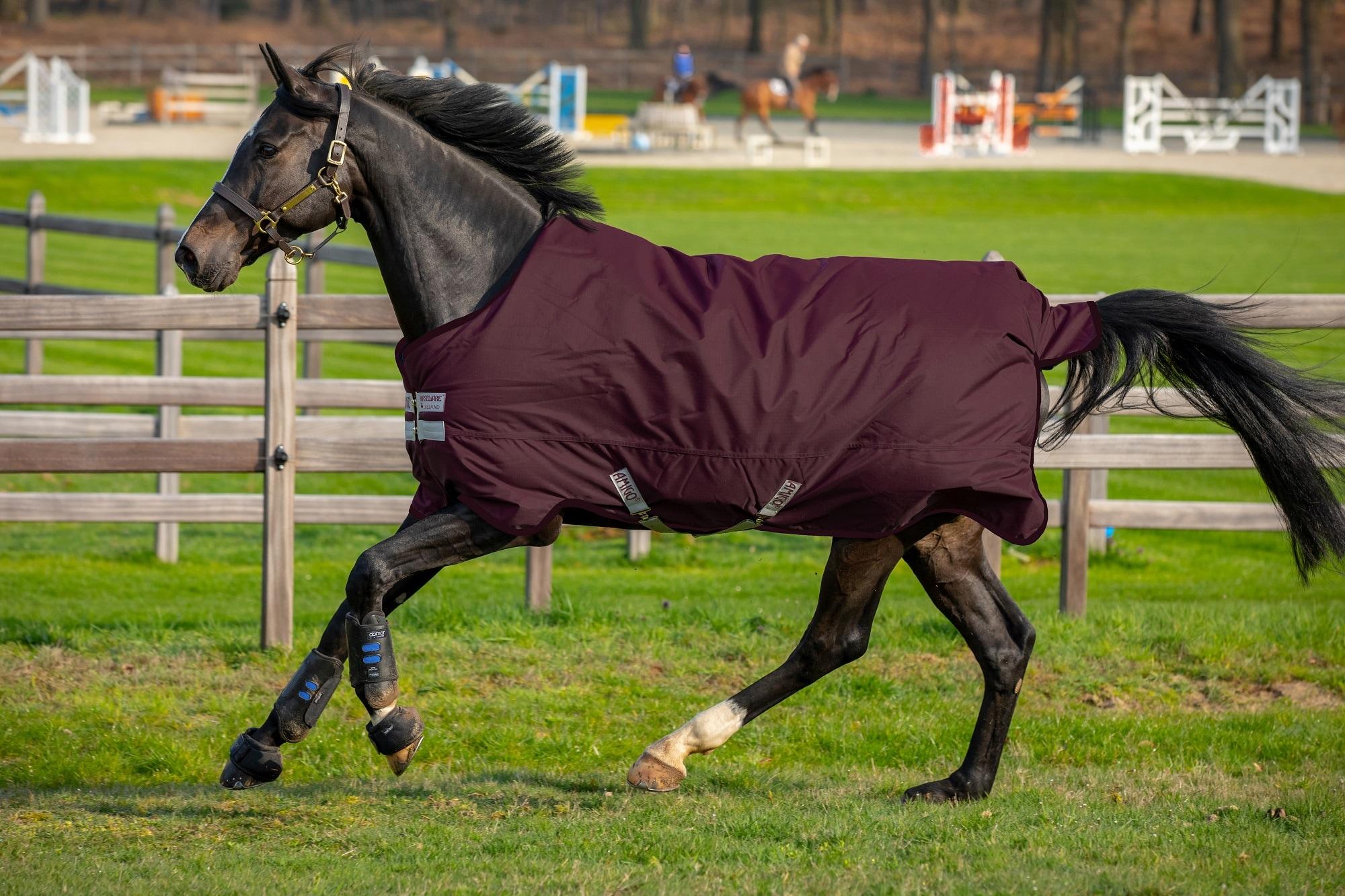 Horseware Amigo Hero Ripstop, fleecefôr, 50g