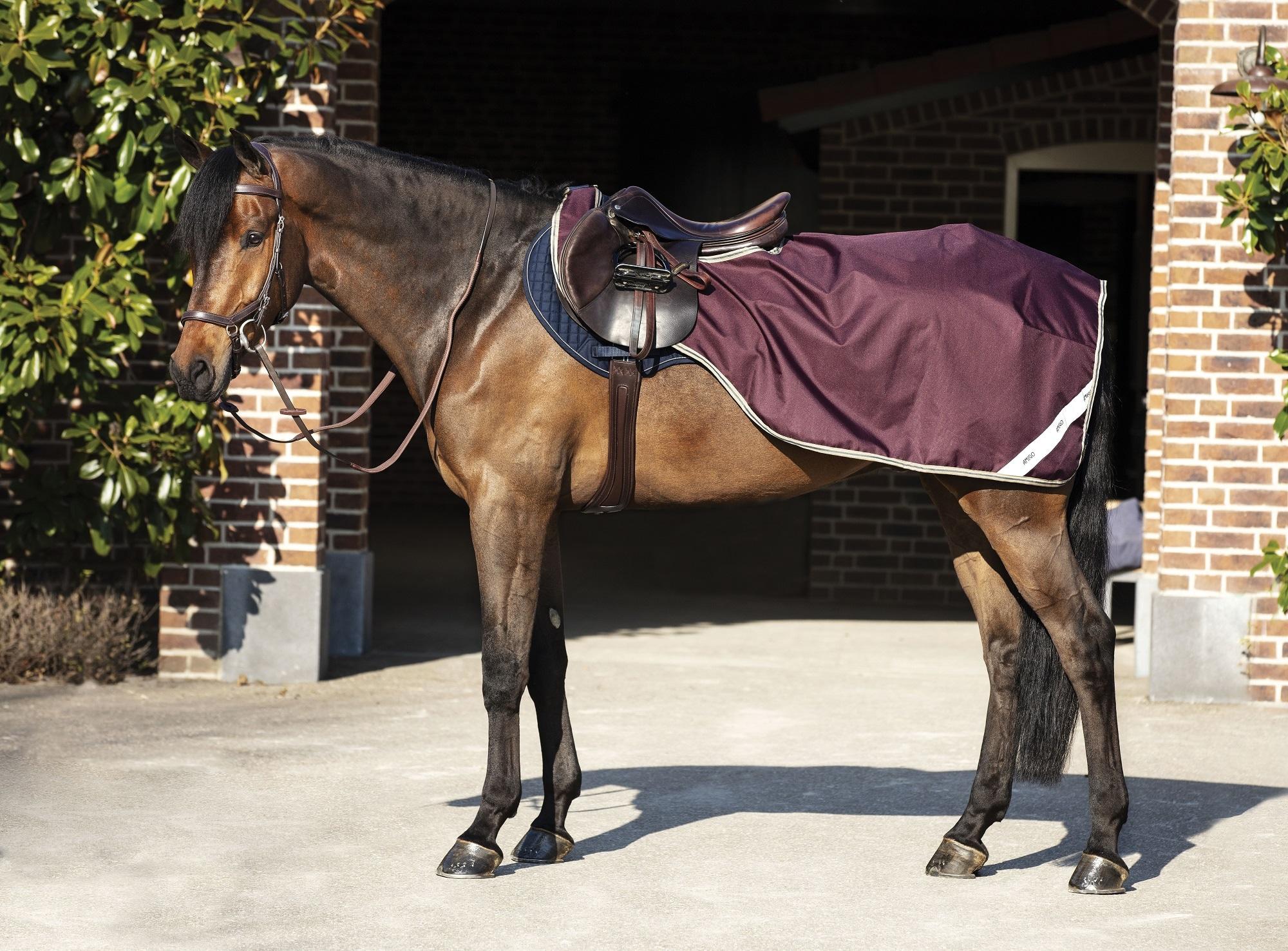 Horseware Amigo Ripstop ridedekken